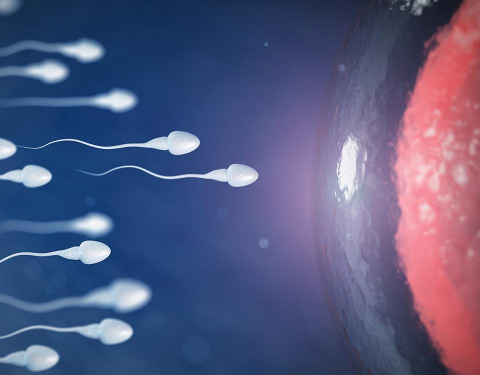 The Effects of Drugs on Sperm